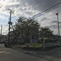 東電柱移設に関する立会い