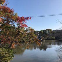 源氏池の秋