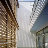 2階スタジオ脇に設けられたルーフバルコニーは、格子がもたらす影が面白い場所にの画像