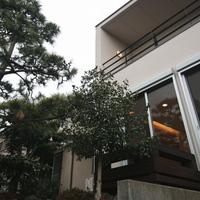 玄関へと続くアプローチには、門かぶりの松が植えられているの画像