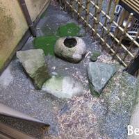 既存坪庭に置かれた石の配置も美しさを感じさせないの画像